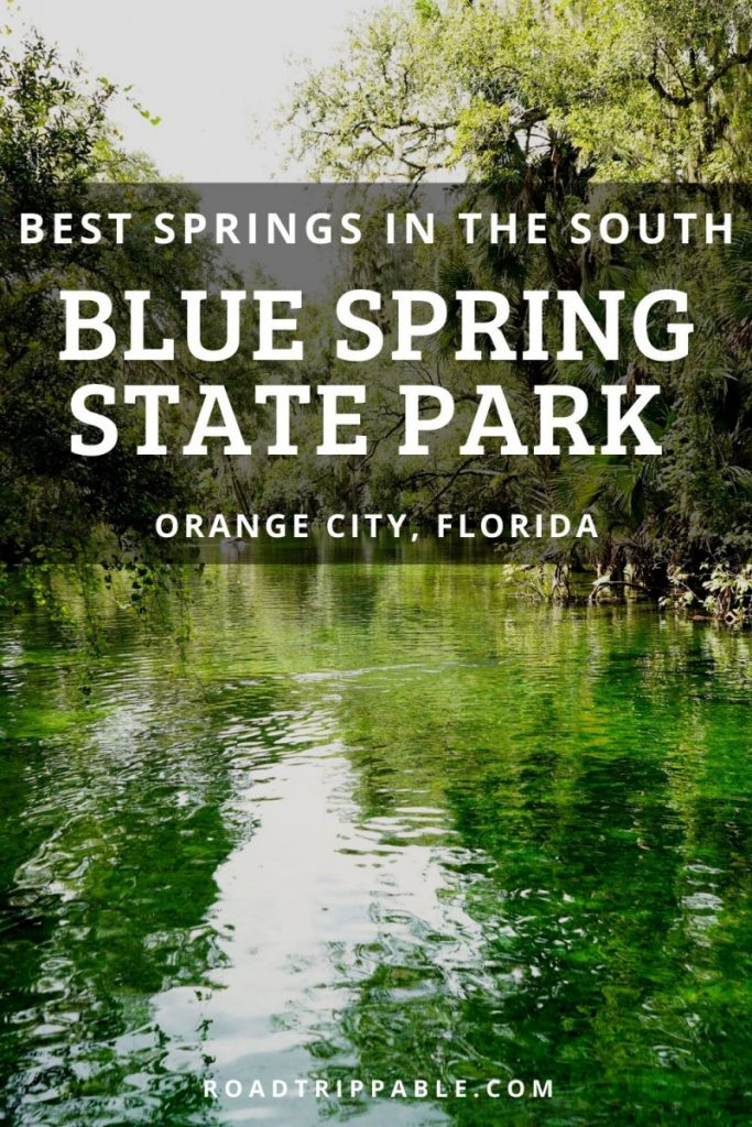 Plan a trip to Blue Spring State Park